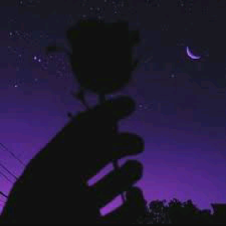 purple, aesthetic, and rose image