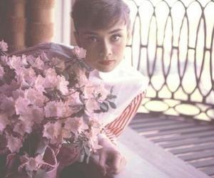 audrey hepburn, flowers, and audrey image