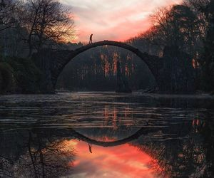 bridge, nature, and sunset image