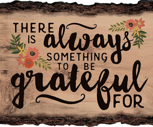 grateful, gratitude, and appeciation image
