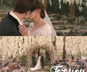 twilight, bella+and+edward, and vampire image