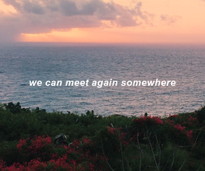 quotes, sea, and meet image
