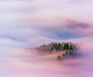 sky, clouds, and forest image