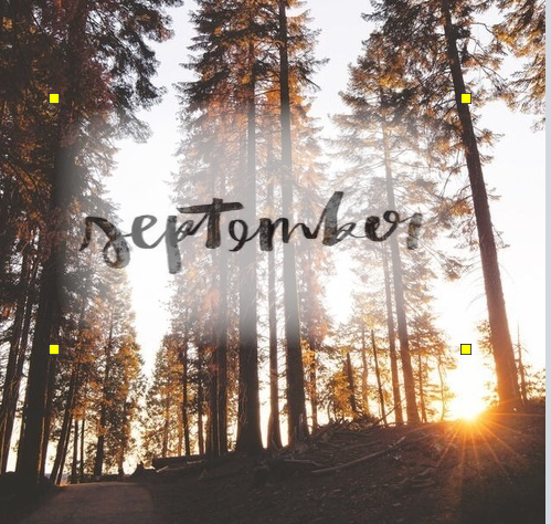 autumn, September, and article image