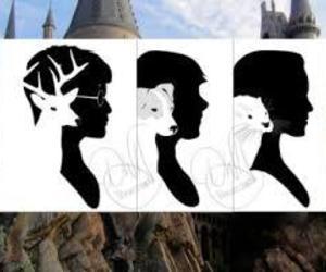 harry potter, patronus, and hermione image