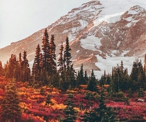 mountains, autumn, and nature image