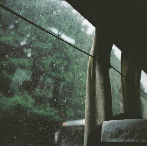 rain, bus, and indie image