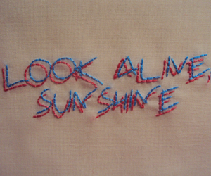 sunshine, blue, and embroidery image