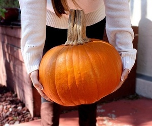 fall, pumpkin, and tumblr image