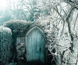 photography, blue door, and snow image