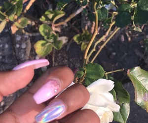 acrylics, flowers, and nails image