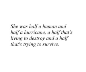 quotes, hurricane, and survive image