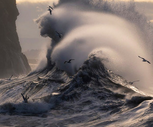 nature, waves, and sea image