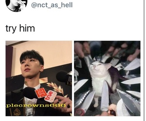 ten, kpop meme, and kpop memes image