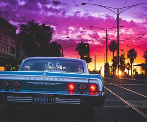 colors, los angeles, and purple image