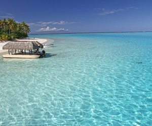 bora bora, ocean, and holidays image