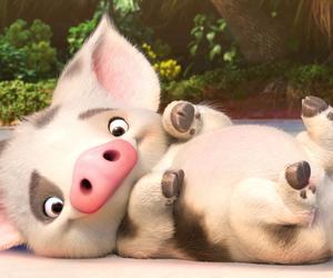 pig, moana, and disney image