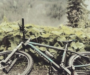 beautiful, cycling, and mtb image