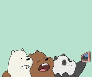 bear, wallpaper, and panda image