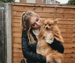 atumn, blonde, and dog image