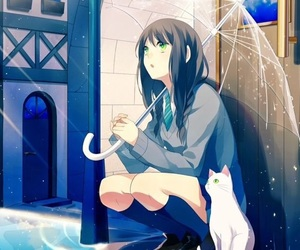 anime, cat, and rain image