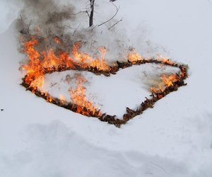 fire, heart, and snow image