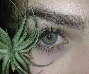 beauty, green, and eye image