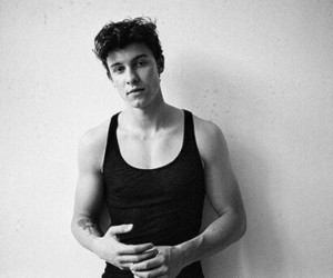 black and white, shawn, and mendes image