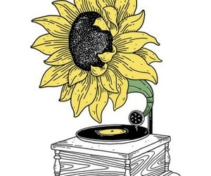art, sunflower, and flowers image