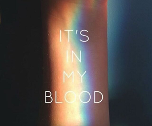rainbow, blood, and lesbian image
