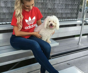 adidas, outfit, and dog image