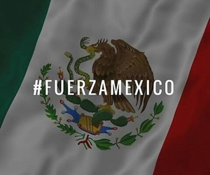 mexico and fuerza image