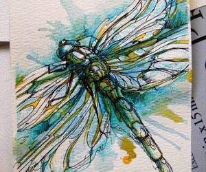 art and dragonfly image