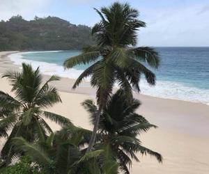 beach, ocean, and aesthetic image
