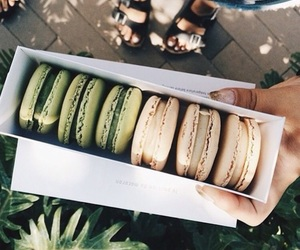 colours and macarons image