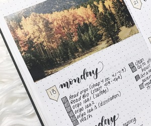 creative, bullet journal, and ideas image