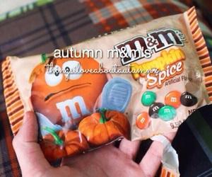 fall, autumn, and tumblr quality image