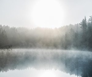 fog, memories, and nature image