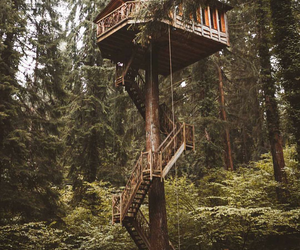 amazing, treehouse, and Dream image
