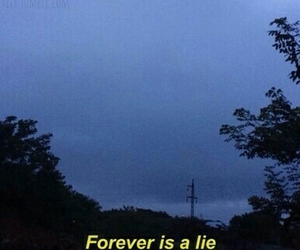 lies, forever, and grunge image