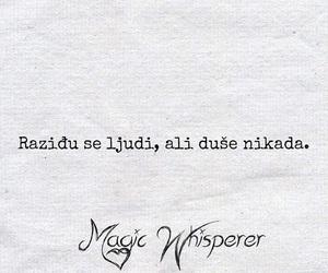 balkan, magic whisperer, and over image