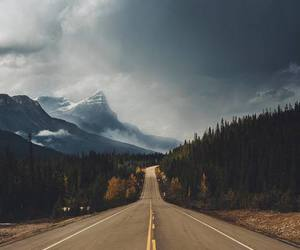 explore, nature, and road image