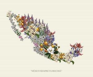 flores, sismo, and méxico image