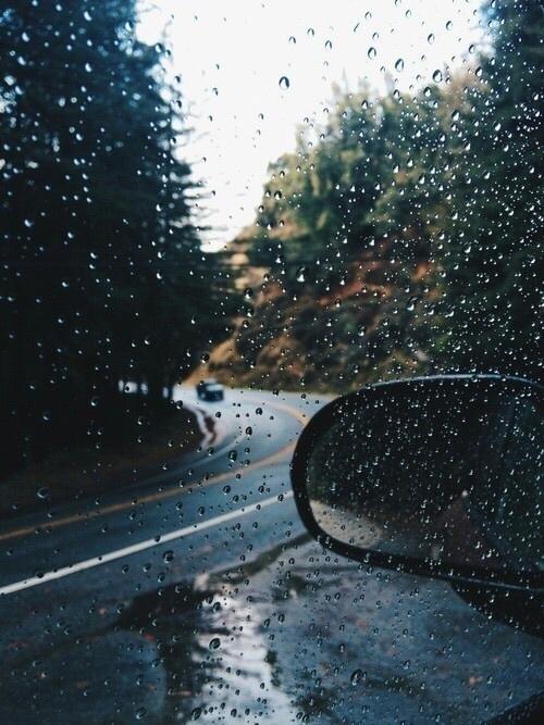 rain, autumn, and fall image