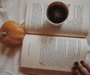 autumn, so cozy, and loveliest autumn image