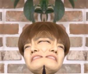 exo, memes, and suho image