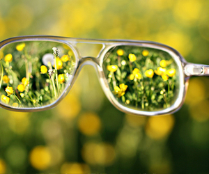 glasses, photography, and nature image