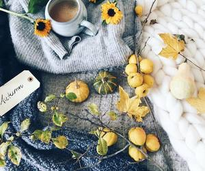 aesthetic, alternative, and fall image