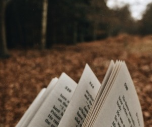 💛 reading during autumn