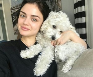 lucy hale, dog, and puppy image